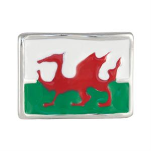 Picture of Welsh Flag Charm